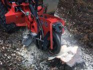 location de rogneuse sur chenille pour éliminer les souches d'arbre