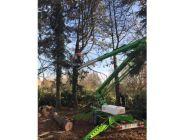 Nacelle en location chez Locamat pour les travaux forestiers